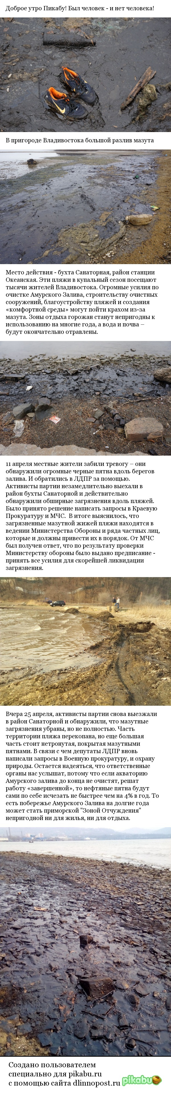 Пригород Владивостока тонет в мазуте владивосток, мазут, экология, фотография, катастрофа, мчс, минобороны, длиннопост, негатив