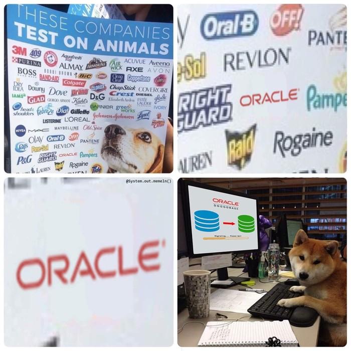 Компании, проводившие опыты на животных