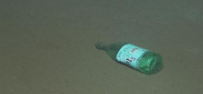 Ученые рассказали о пластиковом мусоре в Марианской впадине Марианская впадина, Мусор, Экология, Океан, Пластик