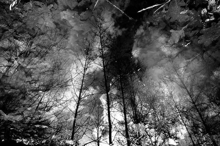 2 осенних отражения Осень, Черно-Белое, Моё, Фотография, Фотограф, Настроение, Canon