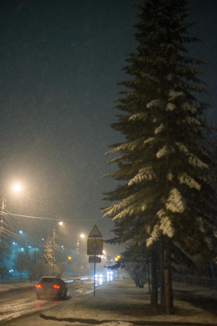 Май, Сибирь. Скоро лето... Снегопад, Новосибирск, Глобальное потепление, Весна, Погода, Снег, Видео, Длиннопост
