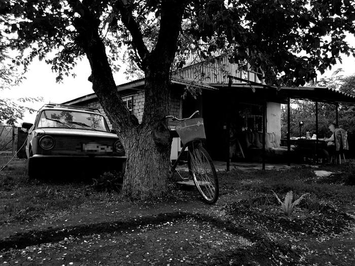 Фото из прошлого... Фотография, 80-е, Копейка, Черно-Белое фото, Черно-Белое, Дача, Ностальгия, Прошлое