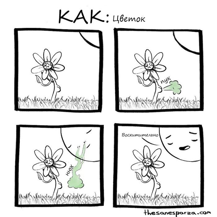 Цветок Sanesparza, Цветы, Пук, Прекрасное, Гифка, Комиксы