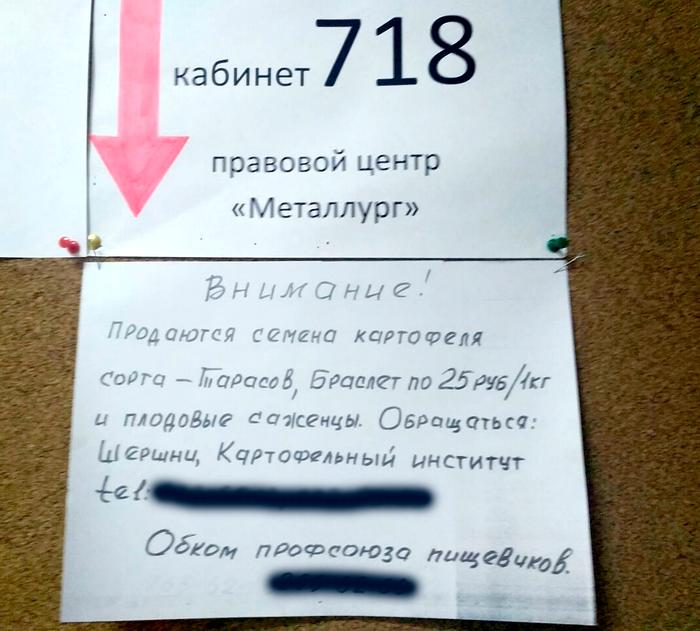 А ты что заканчивал? Объявление, Челябинск, Картофель, Юмор