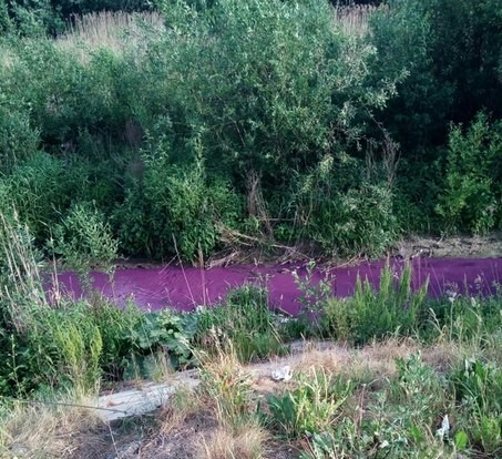 Река Мурзинка снова сменила цвет Санкт-Петербург, Мурзинка, Экология, Разноцветность, Промышленность, Интересное