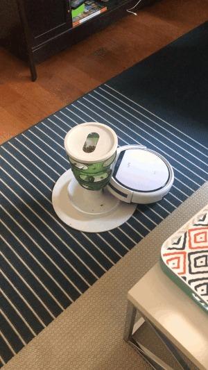 Робот-пылесос ест кошачий корм из дозатора