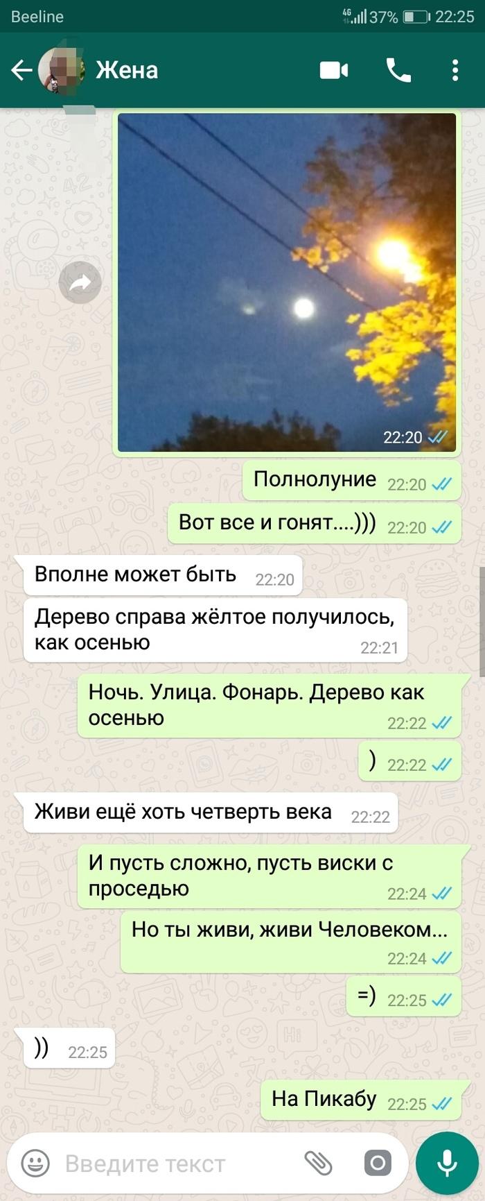 Стихоплет Стихи, Моё, Скриншот, Длиннопост