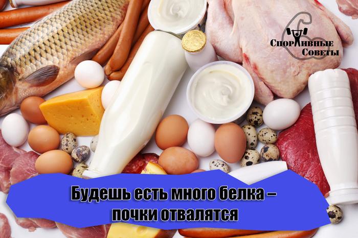 Будешь есть много белка – почки отвалятся Спорт, Питание, Спортивные советы, Похудение, Белок, Здоровье, Исследование, Почки
