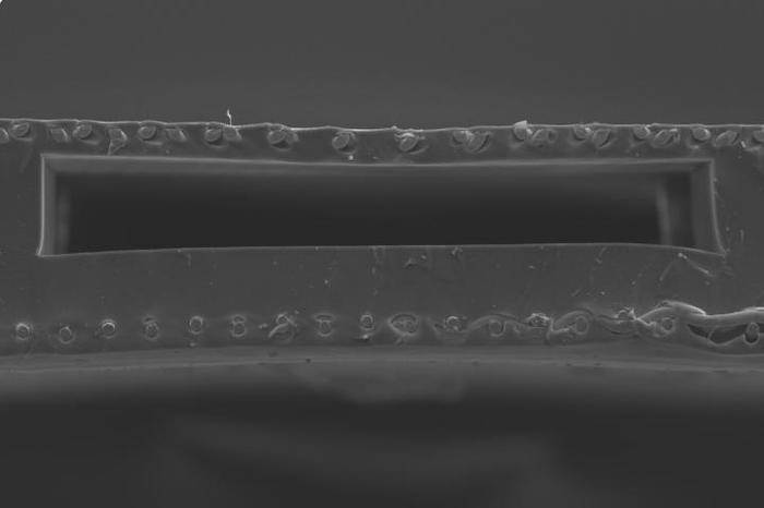 Физики создали внешние искусственные легкие для новорожденных Наука, Новости, Медицина, Искусственные легкие, Новорожденные