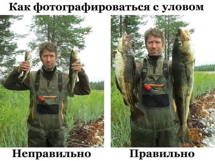 Прошедшему Дню рыбака посвящается...
