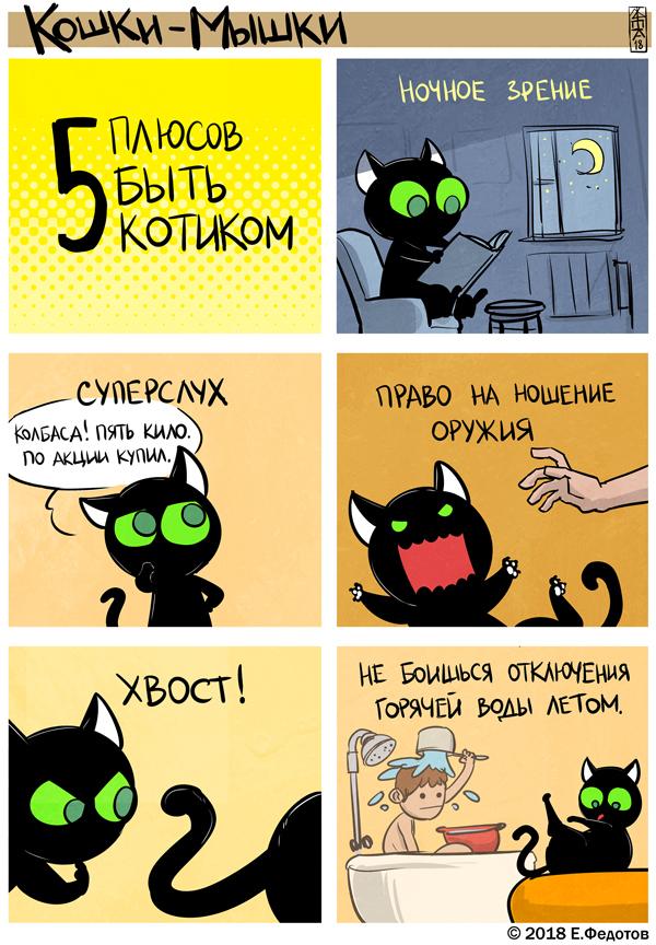 Кот всему голова!