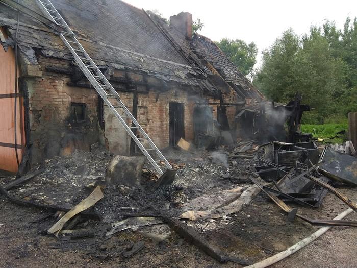 Пожар в приюте для бездомных животных Калининград, Происшествие, Пожар, Животные, Без рейтинга, Сбор денег