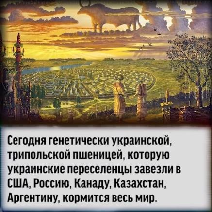 Переведённые выдержки из Украинского учебника предмета географии 8 класса. Украина, География, Образование, Политика, Длиннопост