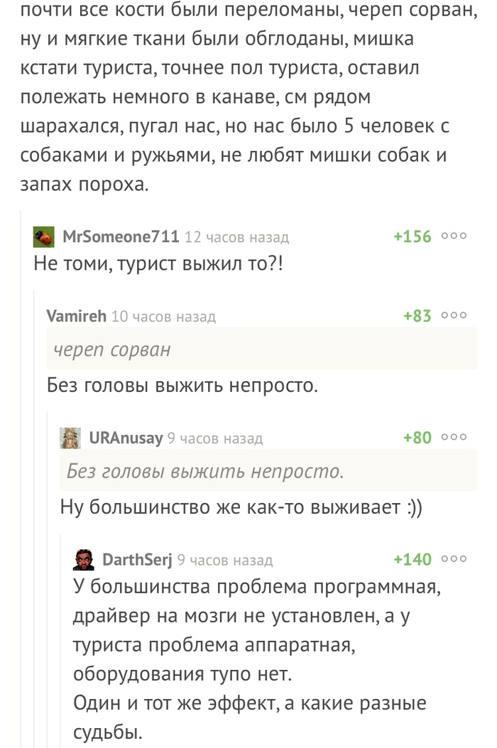 Комментарии Комментарии на пикабу, Медведь, Туристы, Скриншот