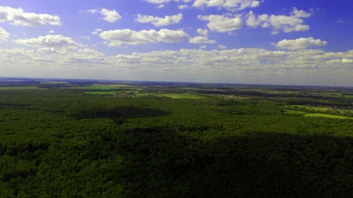 Рейд в лесу Лес, Лига чистомена, Уборка, Мусор, Длиннопост