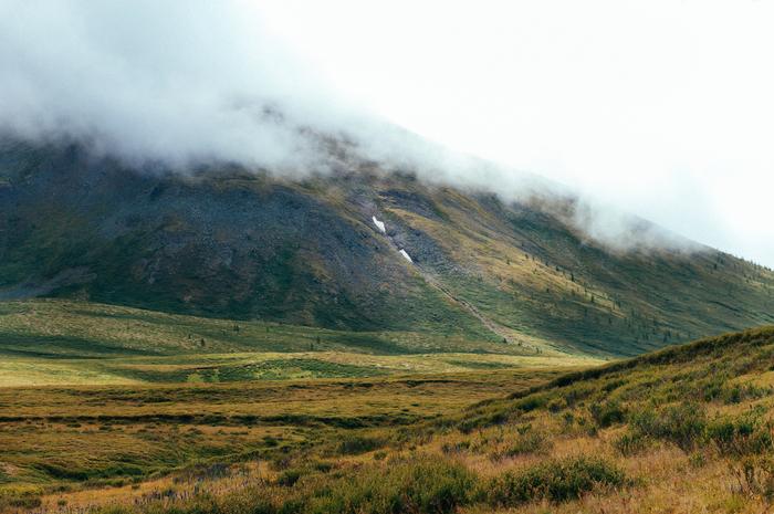 Снежные горы Алтая Горы, Алтай, Длиннопост, Фотография