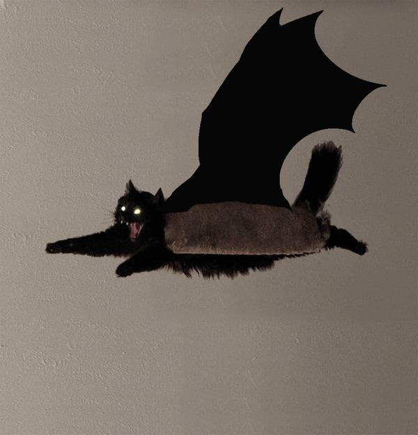 Ужас летящий Кот, Гифка, Анимация