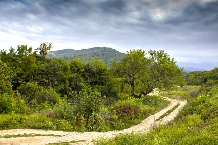 Дорога на Галанчожское озеро, часть 1 Природа, Пейзаж, Галанчожское озеро, Длиннопост