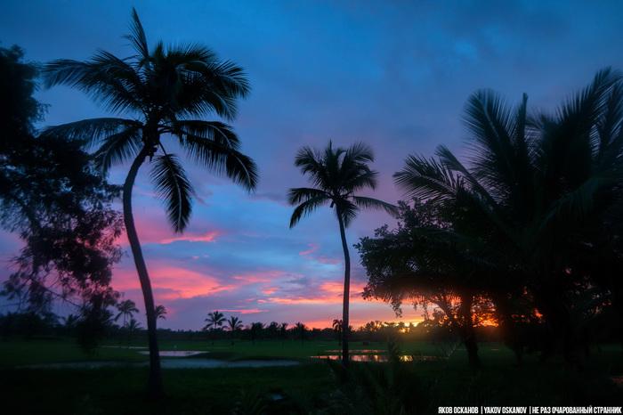 Вид досуга в Доминикане, или как я влюбился в Маму Хуана Доминикана, Отдых, Алкоголь, Мамахуана, Заграница, Длиннопост