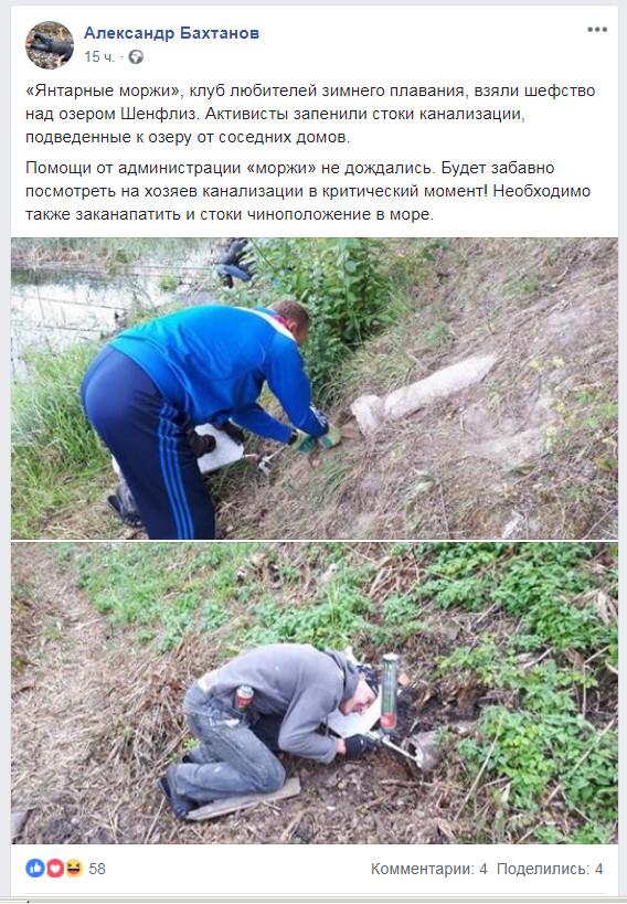 Моржи-активисты Активисты, Калининград, Нарушение, Мат
