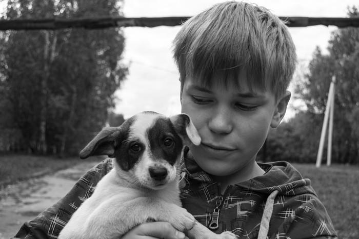 Спасайте их Nikon d3100, Собака, Бездомные животные, Добро, Длиннопост