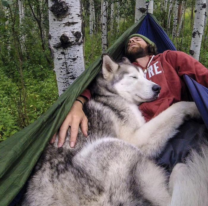 И никакого одеяла не нужно!