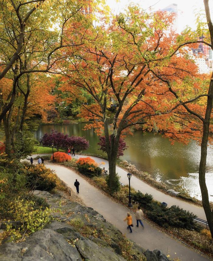 Нью-Йорк , Центральный парк.