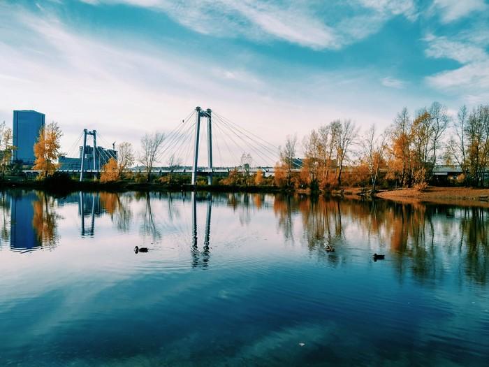 Осень Фотография, Красноярск, Осень, Природа России, Улица, Листья, Длиннопост