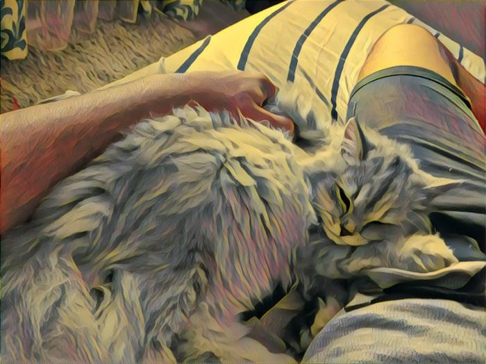 Коту нипочём холода, внутри кота теплота (Когда prisma сработала так, как и ожидал)