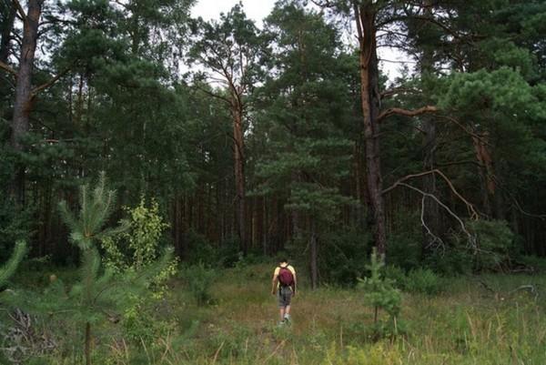 Экстремальный поход в Чернобыльскую зону отчуждения, часть 1 Поход, Чернобыль, Припять, Длиннопост