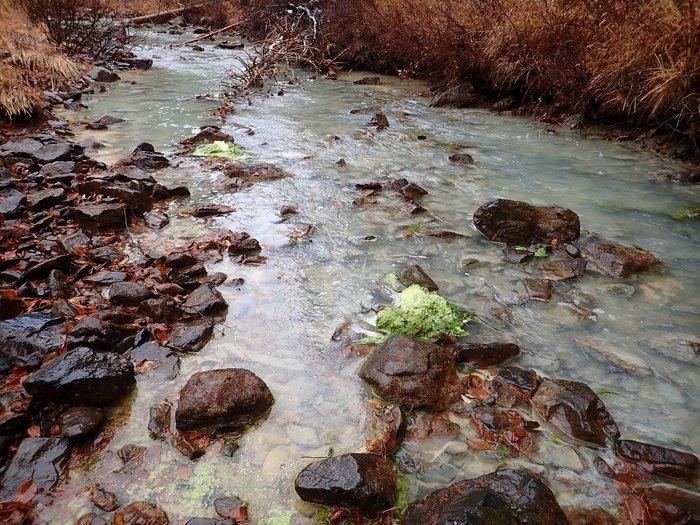 Отравленные реки, заповедник и преследования экологов на Урале Экология, Урал, Заповедник, Река, Загрязнение окружающей среды, Длиннопост