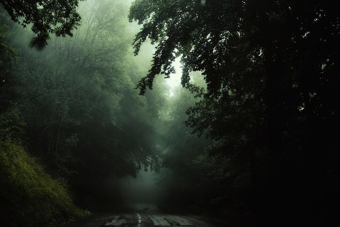 Словно кадр из фильма Фотография, Удачный кадр, Nikon D750