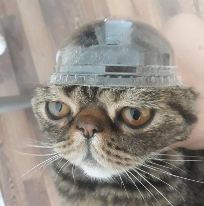 Когда мама купила нелепую шапку