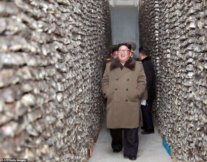 Ким Чен Ын в коридорах замороженной рыбы Северная Корея, Ким Чен Ын, Рыба, Склад, Инспекция, Длиннопост