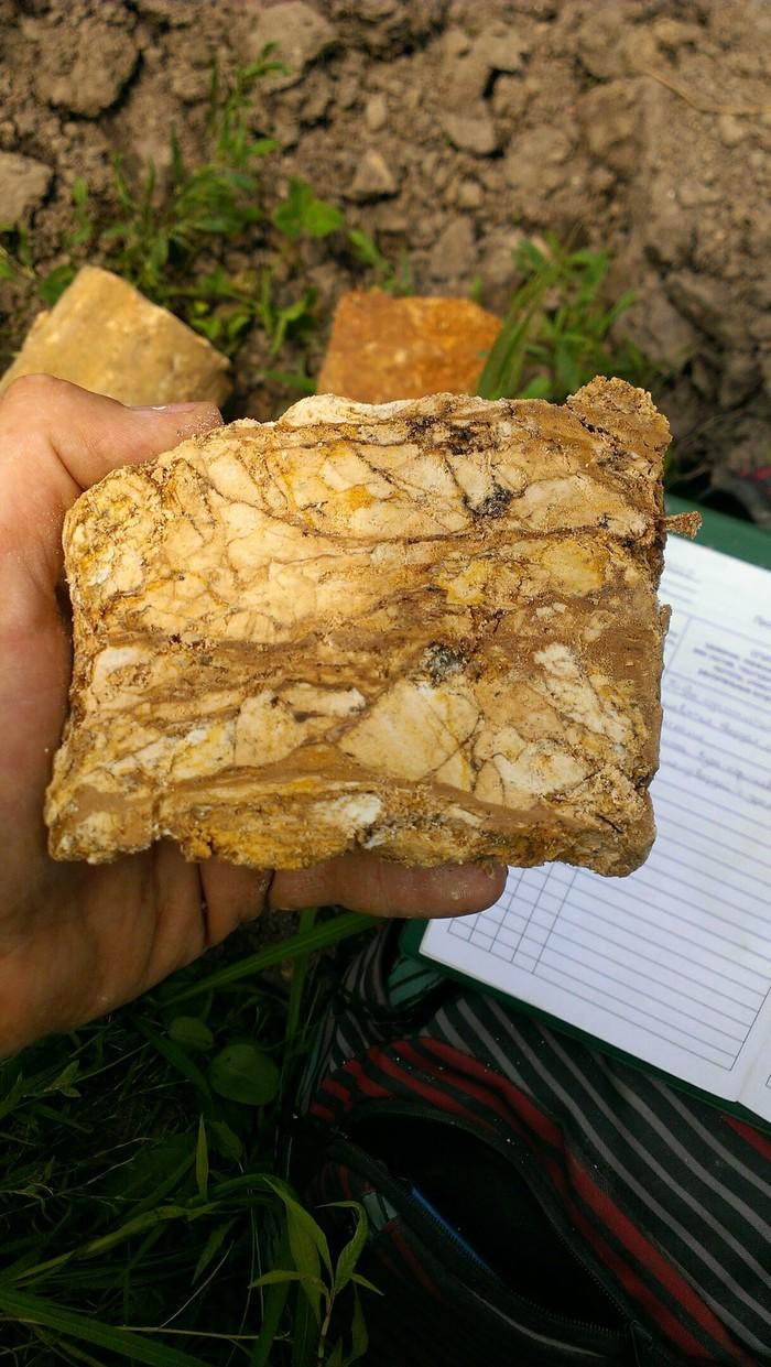 Это ж геологи... Геология, Командировка, Длиннопост