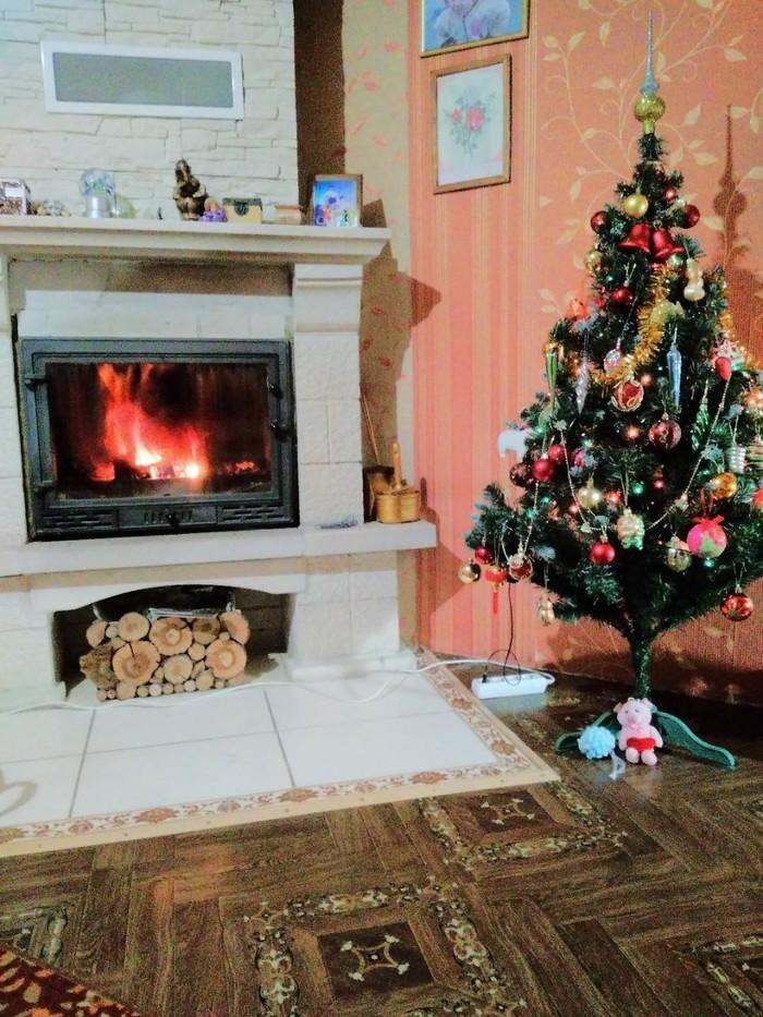 Новогодний беспредел! Новый Год, Кот, Новогодняя елка, Камин, Длиннопост