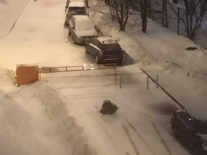 Елка Новогодняя елка, Москва, Плохой поступок, Вывоз мусора