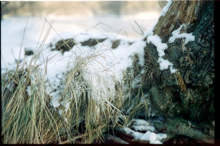 Прогулка у реки Фотография, Фотопленка, Leica, Зима, Длиннопост