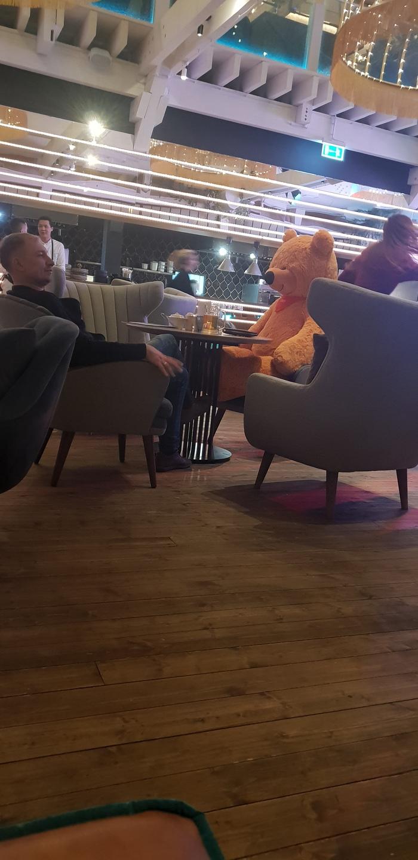 Когда не с кем пойти в бар Бар, Медведь, Одиночество