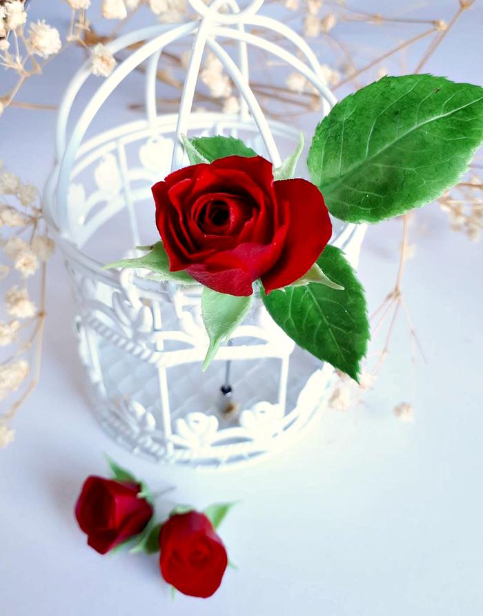 Брошь и серьги с розами.Полимерная глина Полимерная глина, Рукоделие без процесса, Цветы, Роза, Украшения ручной работы, Длиннопост