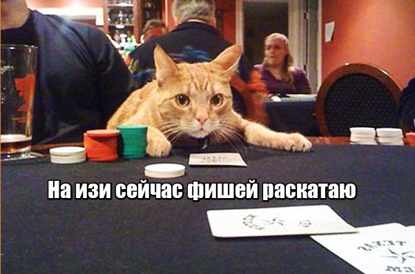 Что такое интернет казино