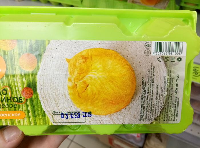 Яйца кота? Кот, Супермаркет, Яйца