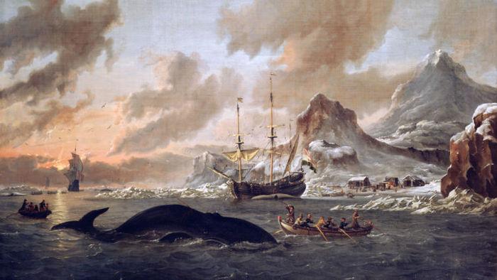 Как в старину охотились на китов? Кит, Китобой, Длиннопост, История, Охота, Море, Заработок