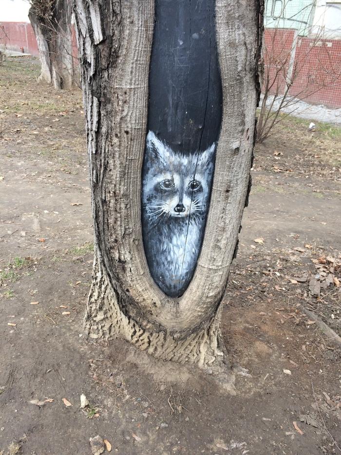Необычное место для художеств) Рисунок, Дерево, Енот, Милота, Длиннопост