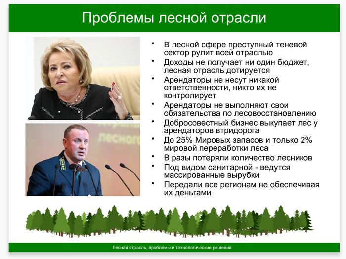 Проблемой лесной отрасли России занялись серьезно Лес, Презентация, Вечные проблемы, Решение проблемы, Слайды, Длиннопост