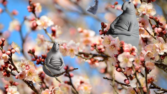 Ждём весну! Или ждуны прилетели