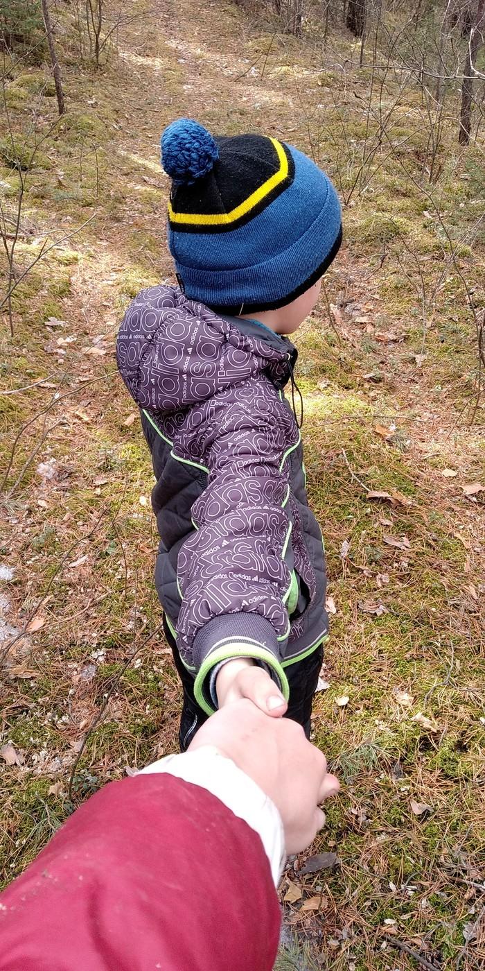 Откуда в лесу деревья Дети, Собака, Ностальгия, Прогулка, Лес, Длиннопост