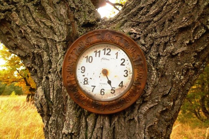 Время. Времена года, Время, Музыка, Pink Floyd, Видео