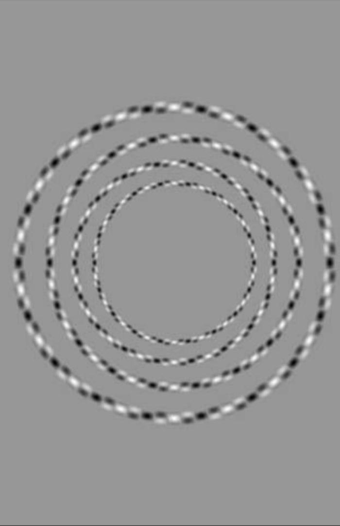 Тут всего 4 круга и они не пересекаются