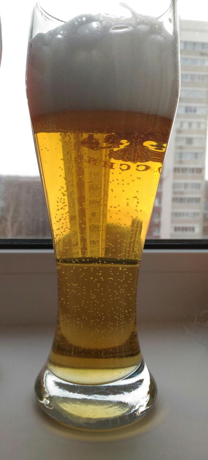 Несколько фото из моей пивной коллекции домашнего пива! Крафтовое пиво, Пивоварение, Пиво, Длиннопост